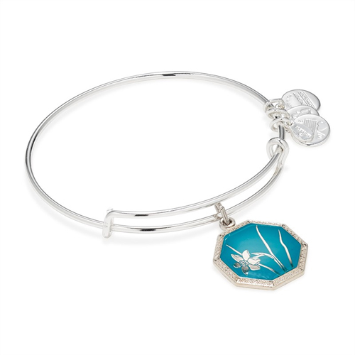 Sterling bracelet by Alex and Ani