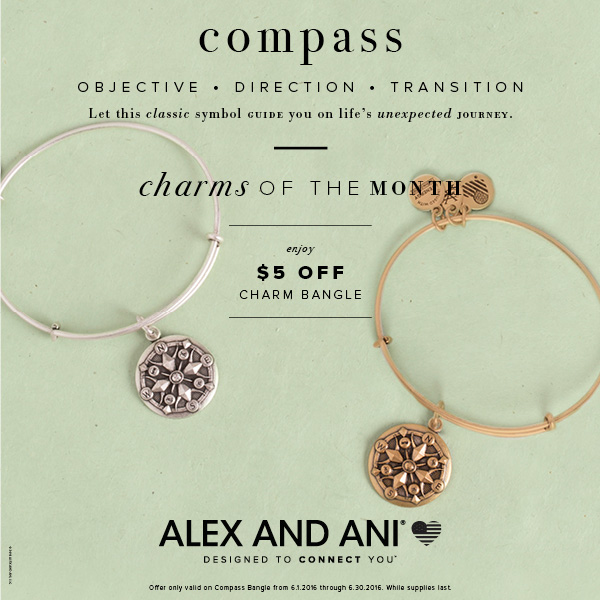 Alex and Ani Charm of the Month is the compass bangle.