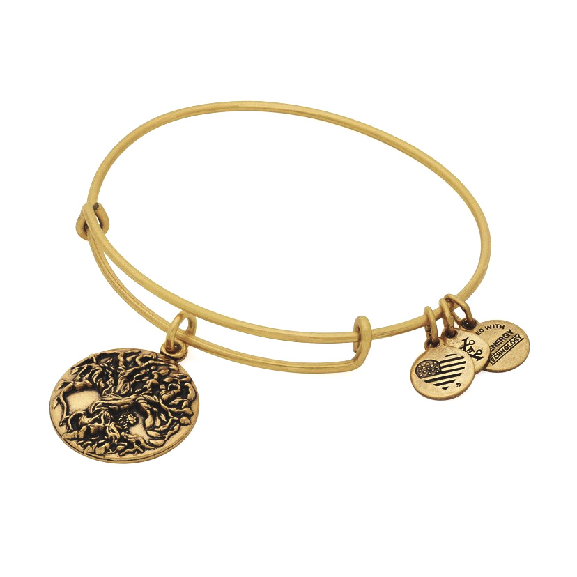 This bangle is $5 off for the month of September, 2016.