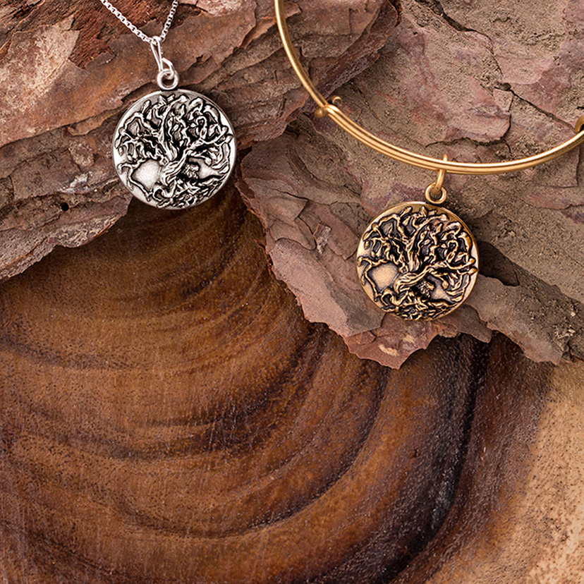 This month's charm of the month is the Alex and Ani Tree of Life charm and bangle.