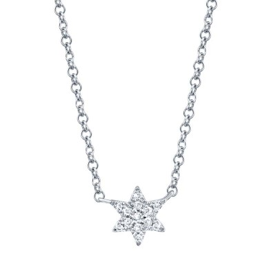 0.03ct 14k White Gold Diamond Star of David Necklace